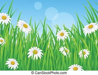 草, 風景