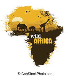 荒野, 非洲, grunge, 海報, 背景, 矢量, 插圖