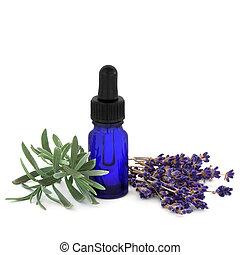 药草, 淡紫色, 本质