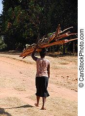荷を積みなさい, 木, 女, タンザニア, -, 間, 届く, アフリカ