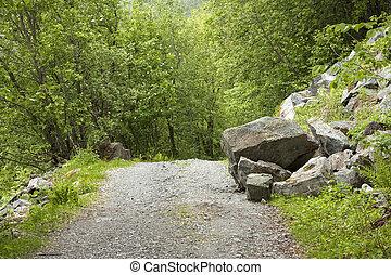 落ちている, 森林, 大きい, 岩, road.