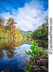 落下, 秋天风景, 南方, 叶子, 石头, 桌子, 卡罗来纳, 日出, 反映