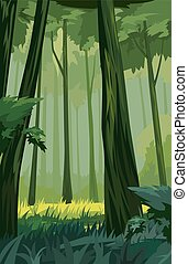 落葉性, 森林, 夏