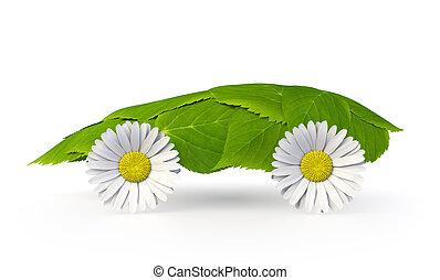 葉子, 汽車