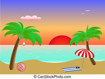 葉書, やし, 海景, 付属品, 2, 砂の 海, 横, 浜, 日没