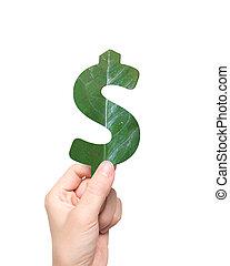 葉, お金, ドル記号, 緑, 手を持つ, 形