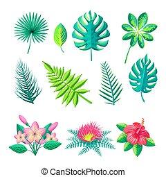 葉, そして, 花, コレクション, ベクトル, イラスト