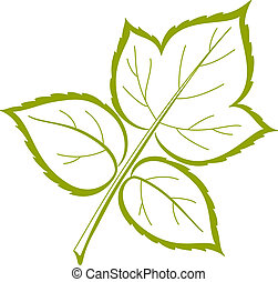 葉, の, ラズベリー, ベクトル