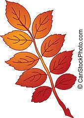 葉, の, dogrose, ベクトル