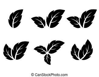葉, アイコン, セット