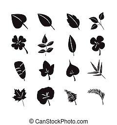 葉, アイコン, ベクトル, セット