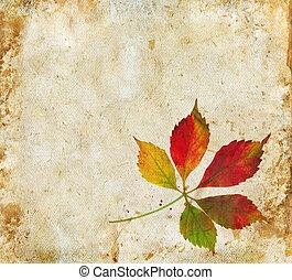 葉, グランジ, 背景, 秋