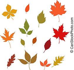葉, コレクション, 秋, デザイン, 背景, 白