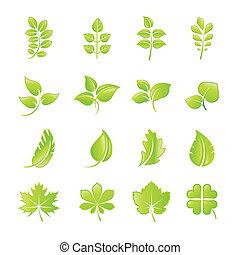 葉, セット, 緑, アイコン