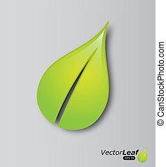 葉, デザイン