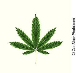 葉, マリファナ