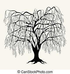 葉, ヤナギ, シルエット, 黒, 木