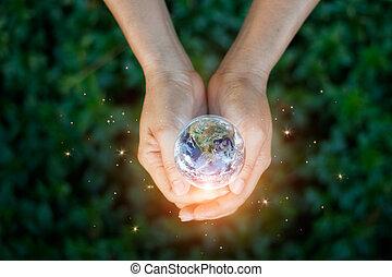 葉, 保有物, 供給される, 概念, エネルギー, 自然, nasa., 手, これ, 日, park., 緑, に対して, セービング, 地球, 要素, イメージ, 平面図