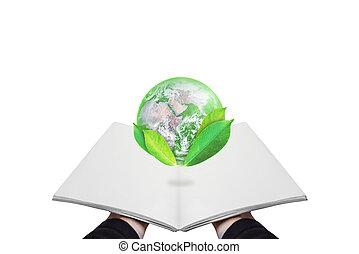 葉, 保護しなさい, 開いた, 供給される, これ, concept., 隔離された, 要素, 環境, バックグラウンド。, 日, 本, eco 友好的, 保有物, 世界, 地球, 白, 手, イメージ, 地球, nasa