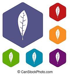 葉, 六角形, アイコン, セット