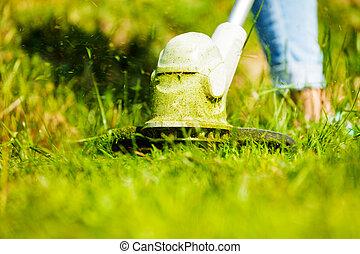 葉, 刃, 雑草, wacker, 切断, 緑の草