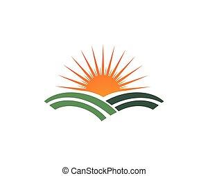 葉, 太陽, シンボル, 緑, 行きなさい, ロゴ