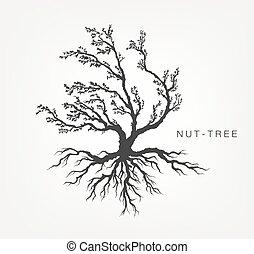 葉, 木, 白い背景