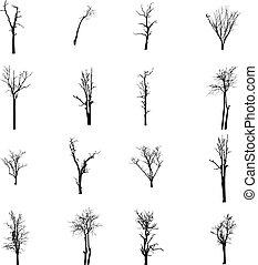 葉, 枯れた木, なしで