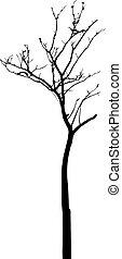 葉, 枯れた木, ベクトル, なしで