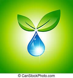 葉, 水滴