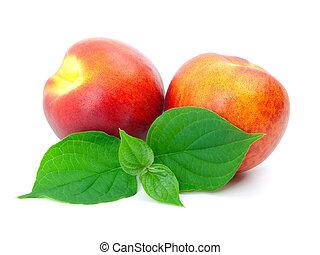 葉, 熟した, 桃