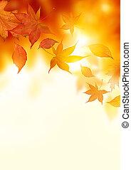 葉, 秋, 落ちる