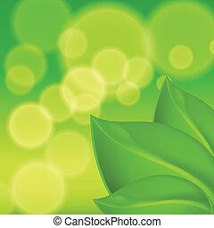 葉, 緑の背景
