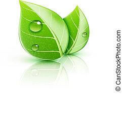 葉, 緑, グロッシー