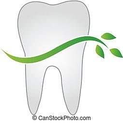 葉, 緑, 歯