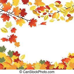 葉, 美しさ, 落ちる, フレーム, 秋