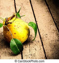 葉, 背景, 新たに, 木製のセイヨウナシ, 古い, clo, 緑, 黄色