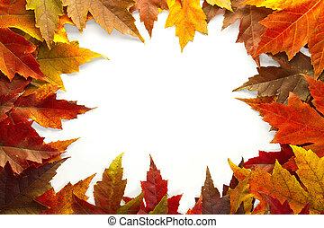 葉, 色, 2, 秋, 混ぜられた, ボーダー, かえで