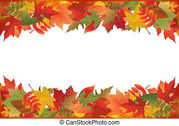 葉, 落ちている