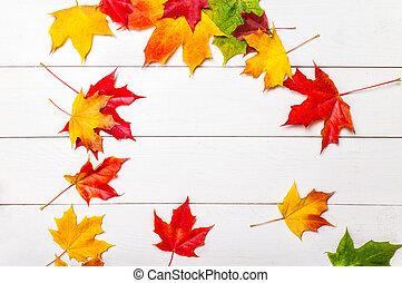 葉, 赤, ビュー。, 背景, 木製である, copyspace., 位置, 秋, 白, 緑, 黄色のトップ, marple, 平ら