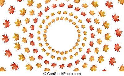 葉, 隔離された, 秋, 背景, 円, 白, かえで
