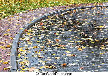 葉, 雨 の後, 水たまり, 舗装, 黄色, ぬれた, 落ちている