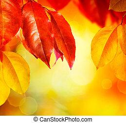 葉, fall., 秋