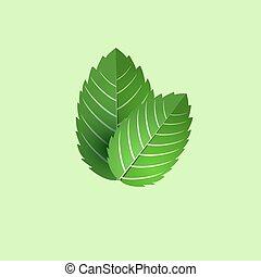葉, isolated., 新たに, object., ミント, 束, ベクトル, 緑, cooking., ...