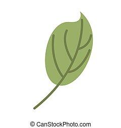 葉, isolated., 葉, 緑の背景, 白