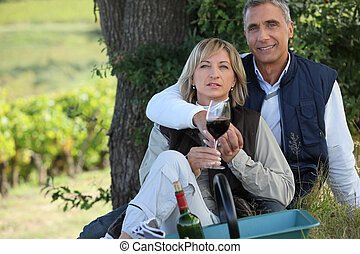 葡萄園, 夫婦, 野餐, 浪漫