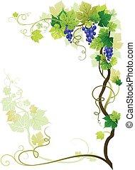 葡萄園, 框架