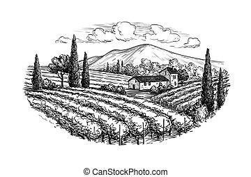 葡萄園, 畫, 風景, 手