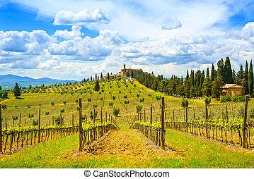 葡萄園, 絲柏, 樹, 行, 以及, 中世紀, 村莊, 在背景上, 在, a, 鄉村, 風景。, val, d, orcia, 陸地, 近, siena, tuscany, italy, europe.
