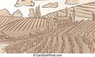葡萄園, 葡萄酒, 圖畫, landcape